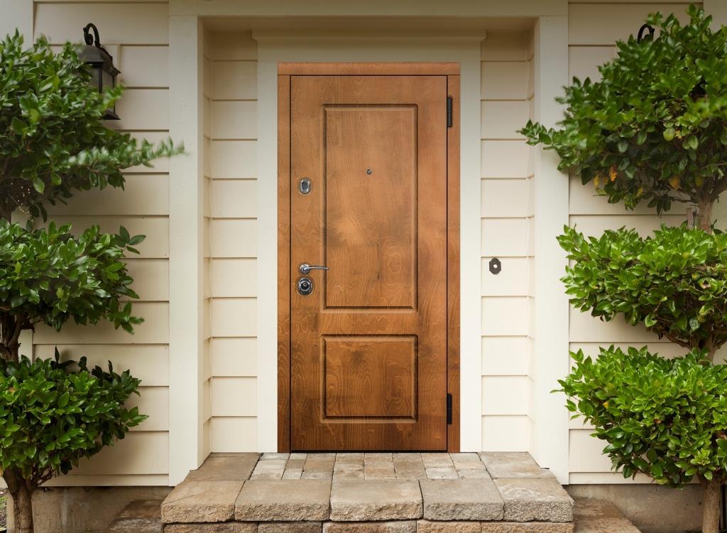 Двери с отделкой из натурального дерева